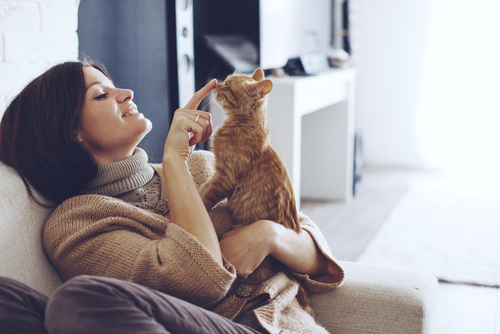 woman wearing sweater resting with cat