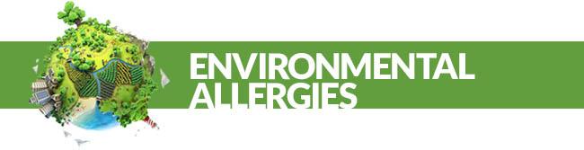 Environmental Alergies Divider