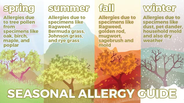 what is summer allergies