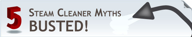 5 Steam Cleaner Myths Busted
