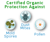 Organic Dust Mite Pillow Covers Blocks Common Allergens