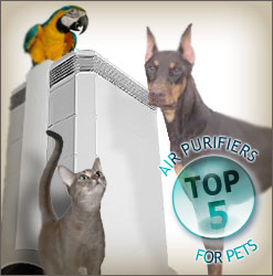 Best Pet Dander Air Purifiers Online