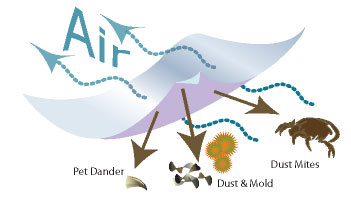 How do dust mite covers work?