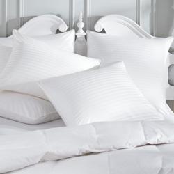 Compare Allergy Pillows