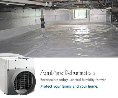... Combat Fall Insects with AprilAire Dehumidifiers & Combat Fall Insects - Basement/Crawlspace Dehumidifiers | Achoo! Blog