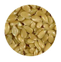 Flax Seeds Are a Good Source of Omega 3 Fatty Acids That May Help Allergies and Eczema