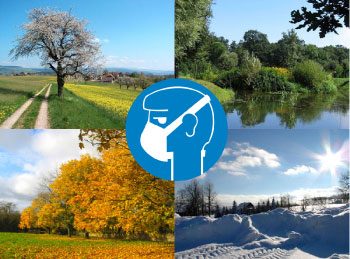 The Four Seasons of Wearing an Allergy Mask