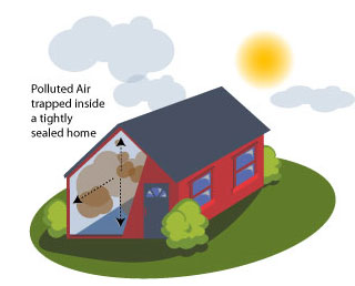 Home Air Purifiers Trap Allergens in the Home