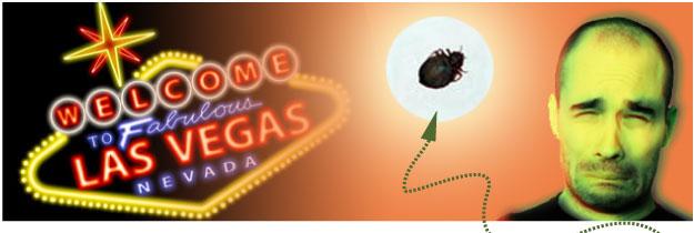 Las Vegas Hotel Bedbugs