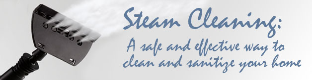 New to Steam Cleaners - Safe Effective Cleaning