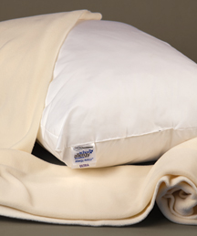 Breathe Easier with a Dust Mite Pillow Covers