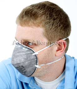 3M 8247 Particulate Mask