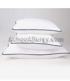Pillows good for allergies homes decoration tips for Sweethome best pillow