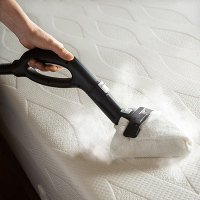 Clean More Than Just Floors With a Reliable Steam Cleaner