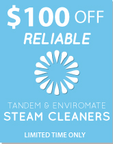For a Limited Take, Take $100 of the Reliable EV1 Steam Cleaner