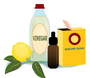 Do-It-Yourself Green Cleaning Products