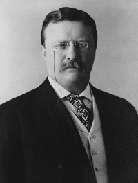 Teddy Roosevelt, Asthma Sufferer