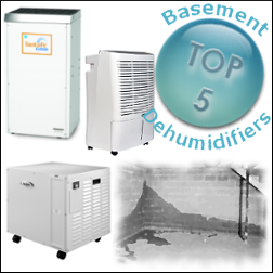 Shop Basement Dehumidifiers