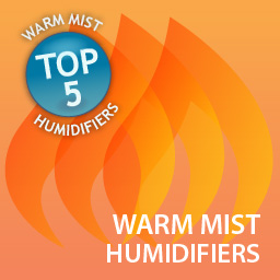 Top Five Warm Mist Humidifiers Online