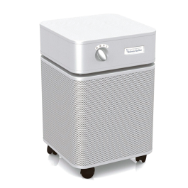 Best Air Purifier For Allergies Hepa Purifiers Top Five