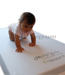 Little Dreamer Mattress Crib (All Foam)