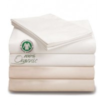 Organic Twin Fitted Sheet Ivory