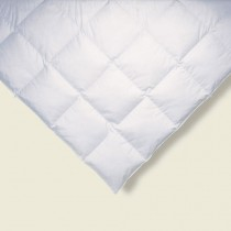 Ogallala Monarch Hypodown Comforters