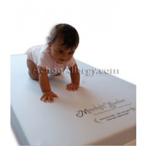 Starlight Support All Foam w/ Visco Crib Mattress