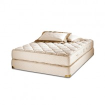 Royal-Pedic Latex Quilt-Top Mattress & Box Spring Sets